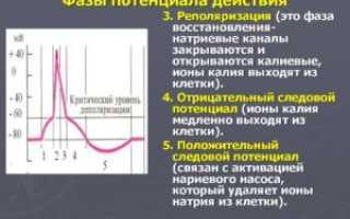 Что такое электродный потенциал?