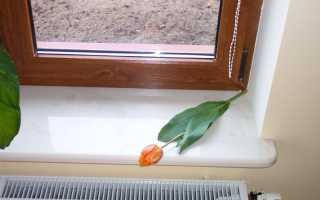 Как отремонтировать подоконник пластикового окна